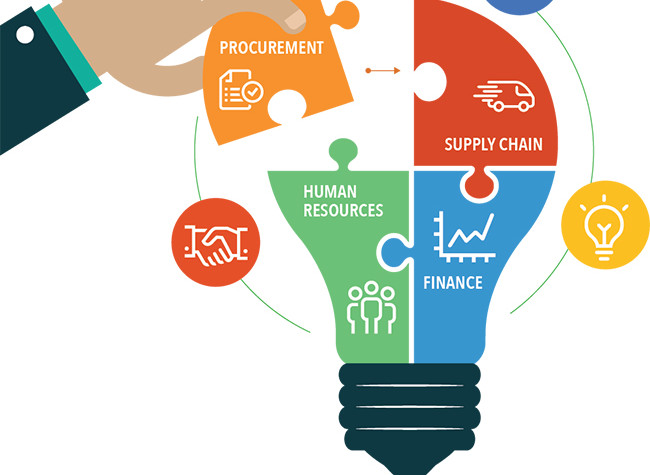 The Numerous Roles of a Enterprise Analyst in Any Organization
